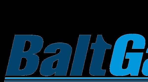 Запчасти на котлы Baltgaz ( Балт газ )